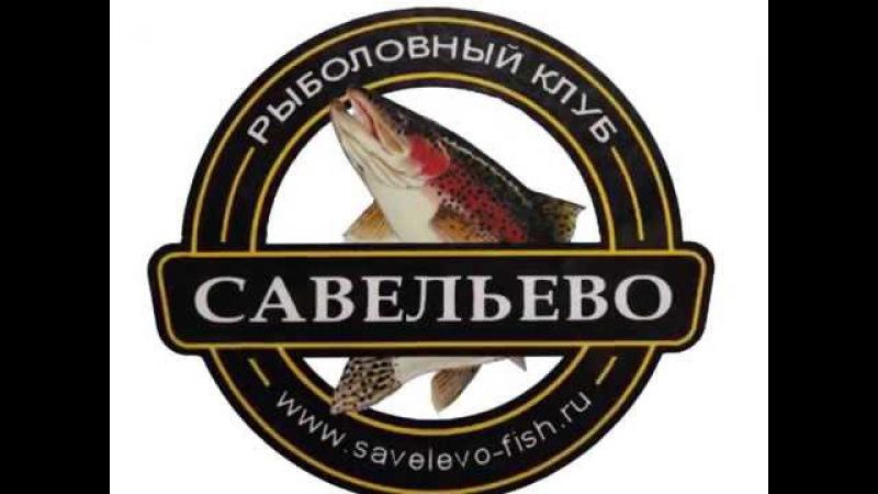 Рыбалка на вип-зоне в Савельево