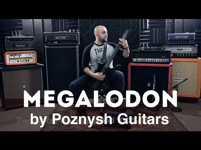 Megalodon by Poznysh Guitars (HD Review by Alex from Rise in Rage)