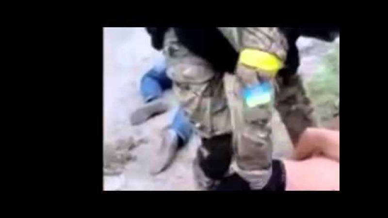 Батальон Азов Казнь сепаратиста Холодная жестокость (Анатолий Шарий) Украина новости