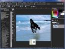 Уроки Corel PaintShop Photo Pro улучшение фотографии