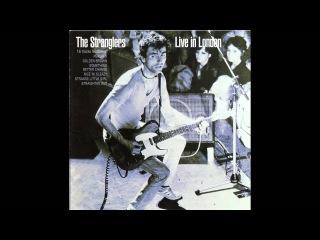 The Stranglers - Midnight Summer Dream Jean-Jacques Burnel Bass Solo European Female