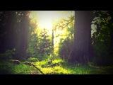 3 HOURS Relaxing Instrumental Meditation Music Life Awakening Background for Yoga, Spa, Massage