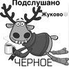 Чёрное подслушано Жуково +16