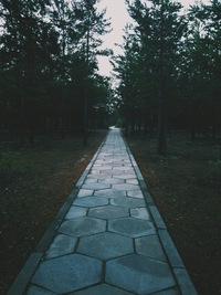 Валентина Синегулова