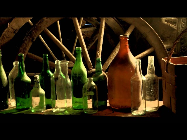 KORPIKLAANI Tequila OFFICIAL MUSIC VIDEO