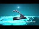 Награды RTG TV