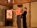 Медицинский Цигун Синг Шен Чжуань Обучающая программа Академия Дэвида Шена 2002