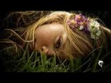 HANK B MARVIN Petite Fleur