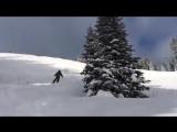 Лыжник и елка