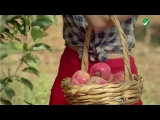 Anwar Dragh … Fart Elroman Khedodah - Video Clip | انور دراغ … فرط الرمان خدوده -  فيديو &#16