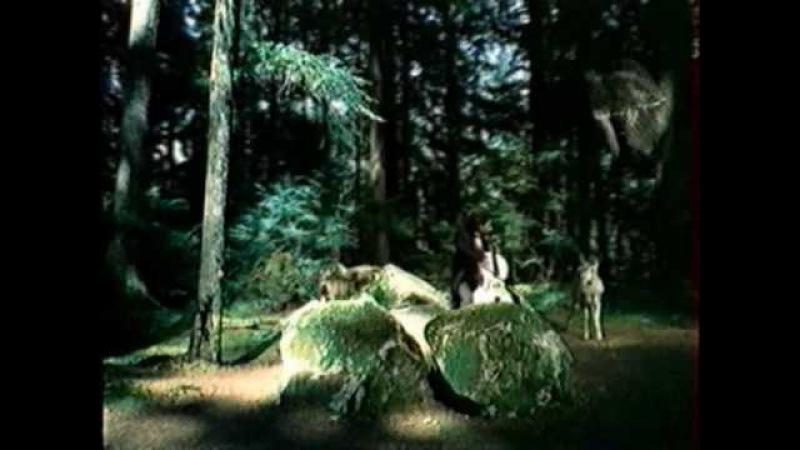 Реклама на Інтері 2000 року, ностальгія
