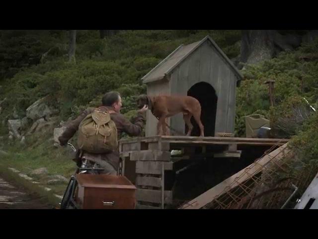 Der Metzger Auf den Hund gekommen Making of
