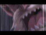 Фейри Тейл 262 серия (озвучка от Ancord)