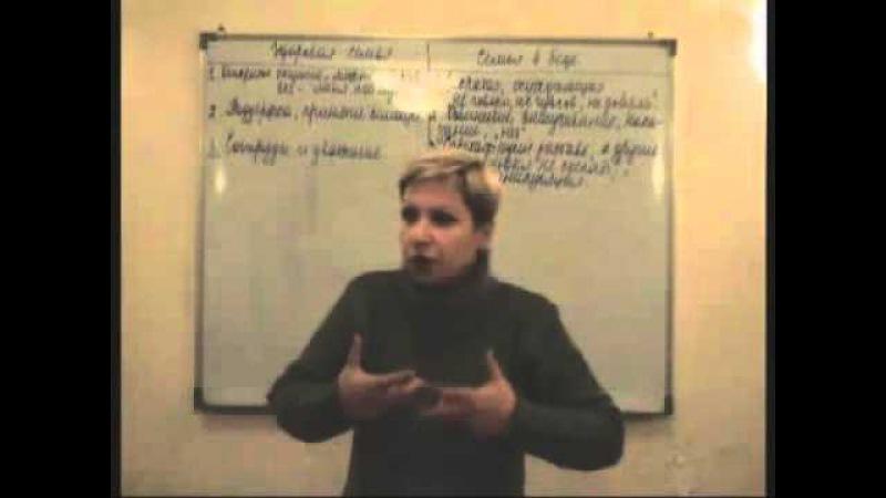 3. Дифункциональная семья   Лекции по зависимости и созависимости   В. Новикова