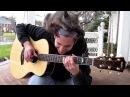 Adam Cantor - Guitar Cat!