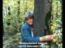 Фильм о владимирских художниках