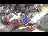 Сирия. Тело погибшего российского пилота Су-24. 18+