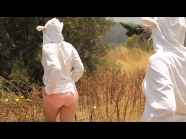 Офигенный ролик про овечек и туриста. =)