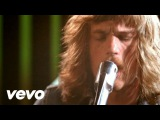 Kings Of Leon - Molly's Chambers (VIDEO)