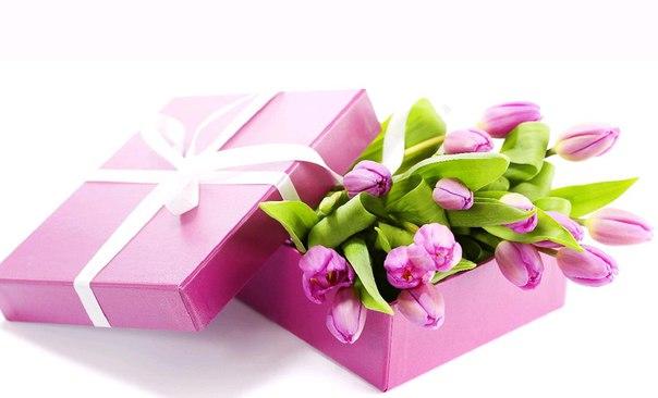 тюльпаны фото
