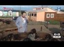 Реутов ТВ открывает Россию! День сорок третий