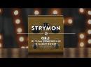 Strymon OB.1 Optical Compressor   Reverb Demo Video