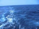Море под музыку Р. Планта
