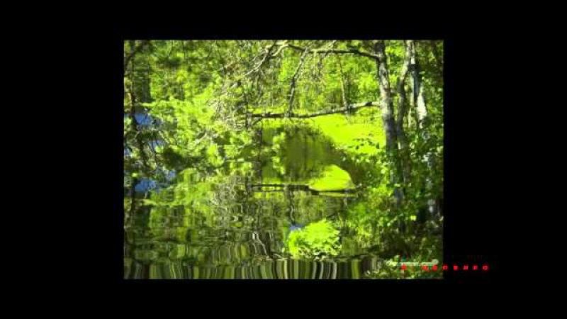 Колдовское озеро Вячеслав Добрынин