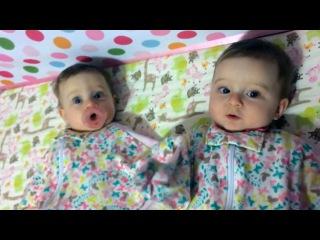 Двойняшки делят соску - Видео из +100500