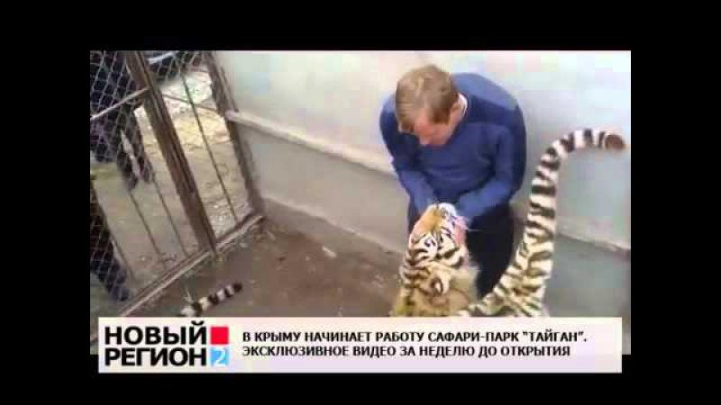 Парк Львов Тайган Обнимашки с тиграми