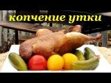 Рецепт копчения утки горячим способом
