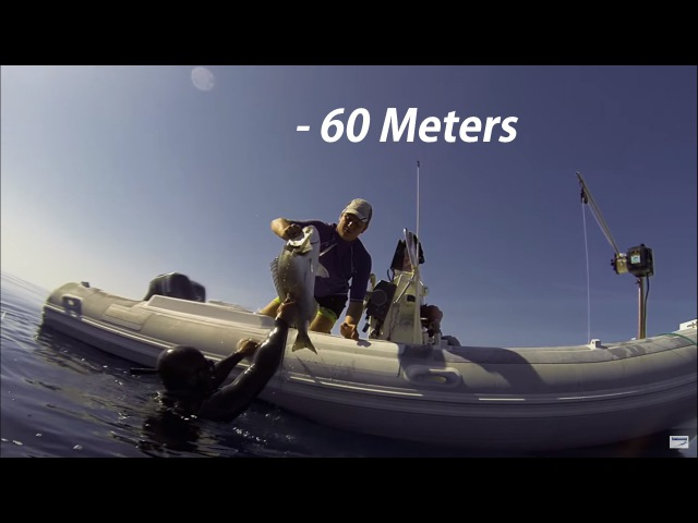 EXTREME 60 M - Spearfishing Deepest Video - Gilt Heads in the Wreck 200ft