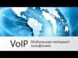 Мобильная VoIP-телефония: как сэкономить на звонках