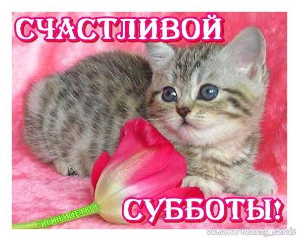 https://pp.vk.me/c628127/v628127868/2eaa5/ixUUFilbP8Y.jpg