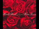 Harold Budd &amp Hector Zazou - As Fast As I Could Look Away She Was Still There