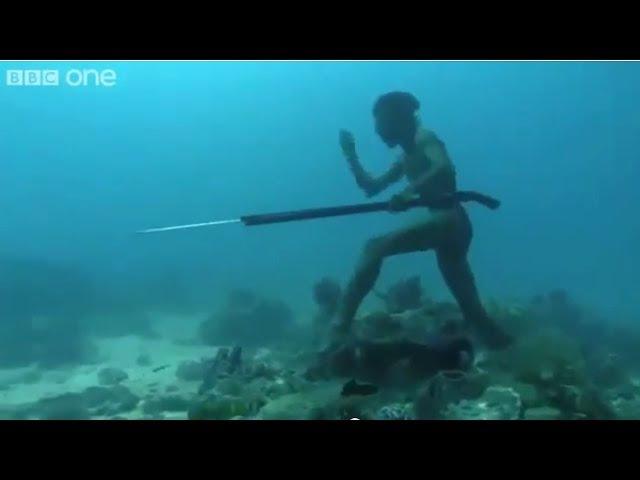 Il Pescatore in apnea migliore di SEMPRE! Vedere per credere - Freediving - Apnee - Apnoe