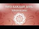 Видео по йоге. Йога каждый день. Ширшасана. Часть 1. Екатерина Андросова