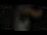 #Солевая 3 Видео из толчка с Ириной Сычёвой посвят МАДИ