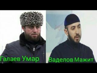 Преподаватели Ингушского Исламского Университета Галаев Умар и Ваделов Абдул-Мажит – об истинном лице псевдосалафитов.