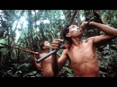 Nomads of the Rainforest - PBS NOVA 1984