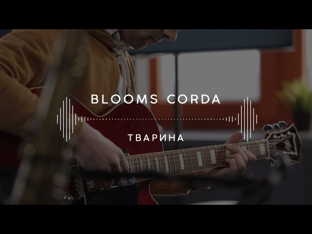 Blooms Corda — Тварина (Stage 13)
