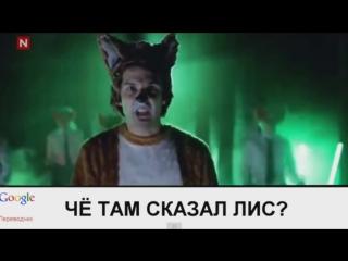 САМЫЙ НАРКОМАНСКИЙ ПЕРЕВОД ПЕСНИ (Ylvis - What The Fox Say_) O_O_HD