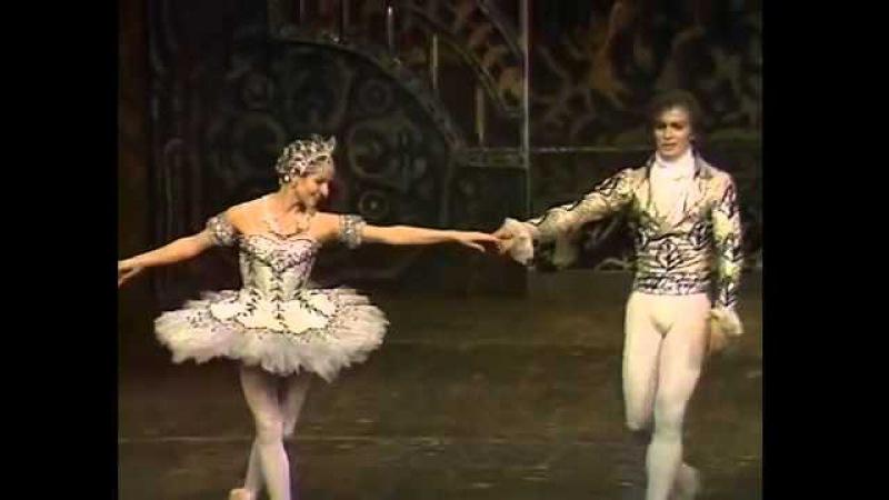 Па де де из балета Щелкунчик Нуреев, Фонтейн T portal ru