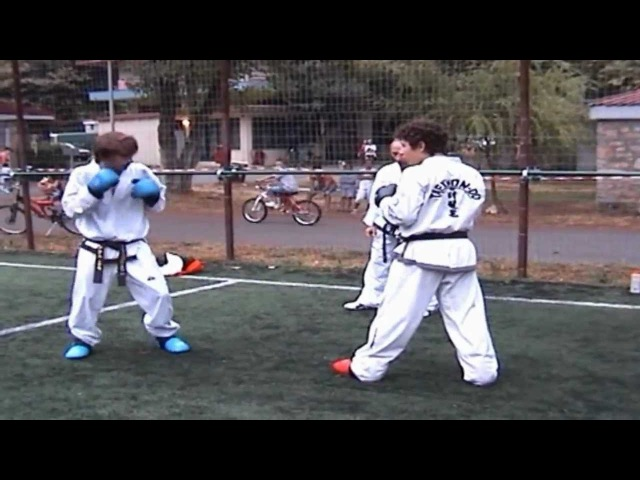 Taekwon-do I.T.F Sparring Techniques and Sparring