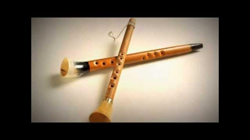 Lithuanian folk instrument Birbyne - Saulius Petreikis