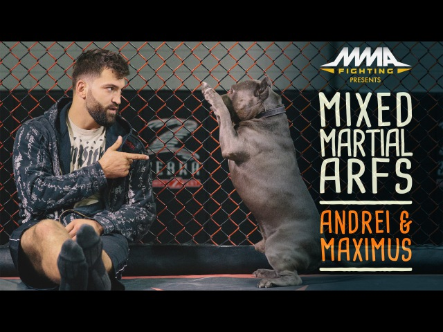 Mixed Martial Arfs - Andrei Arlovski and Maximus