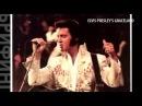 Гитара Элвиса Пресли уйдет с молотка за полмиллиона долларов #брифинг