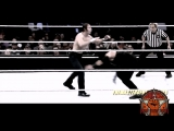 WWE Survivor Series 2015 - Dean Ambrose vs Roman Reigns - highlights by #BOW