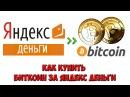 Как купить биткоин за Яндекс Деньги Быстрый и безопасный обменник