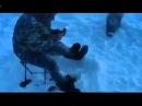 Приколы на зимней рыбалке видео